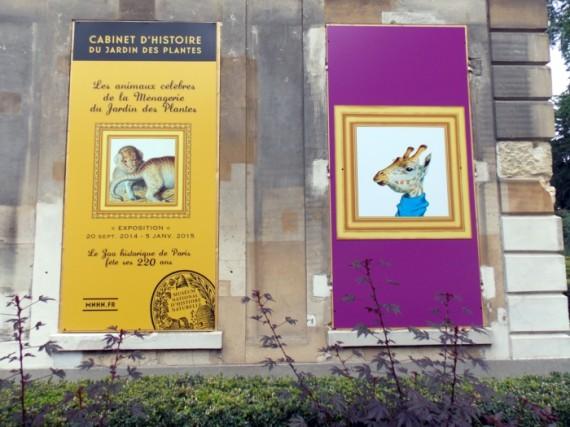 Les animaux c l bres de la m nagerie du jardin des plantes alina reyes - Les animaux du jardin ...