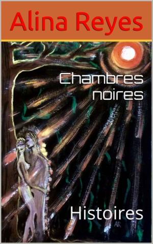 """NOUVEAU LIVRE : """"CHAMBRES NOIRES"""""""