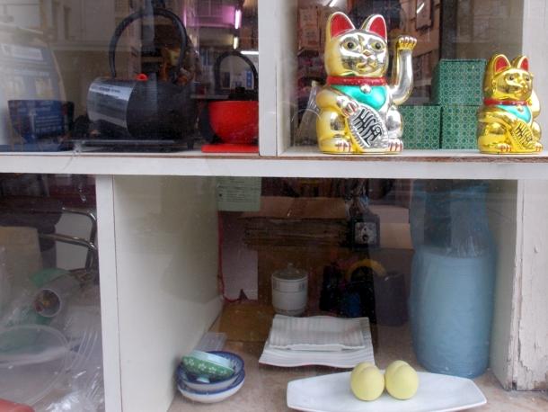 vitrine chat