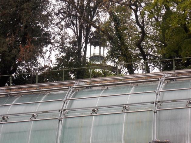 jardin des plantes10