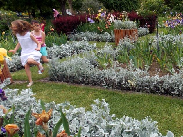 jardin des plantes 10