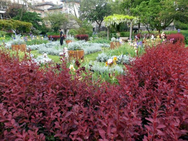 jardin des plantes 8