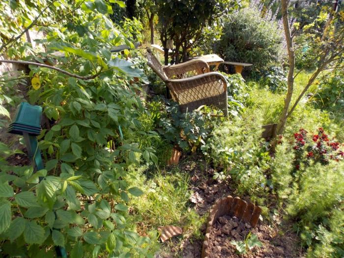 jardin partagé 10