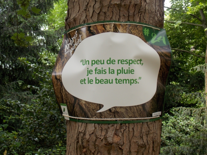 arbre qui parle 13
