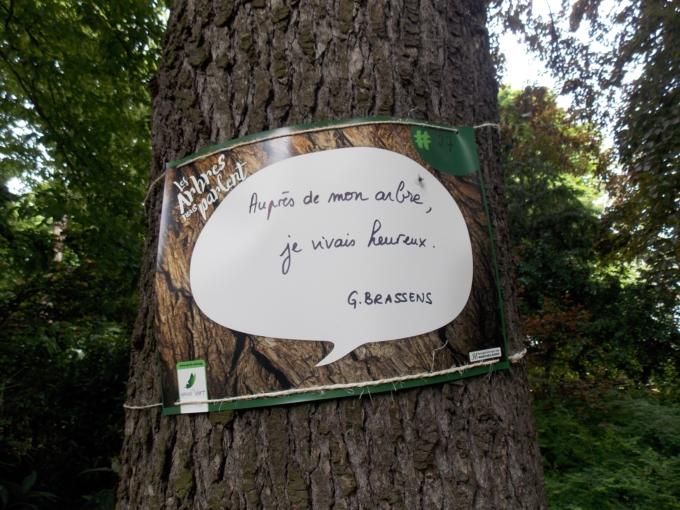 arbre qui parle 14