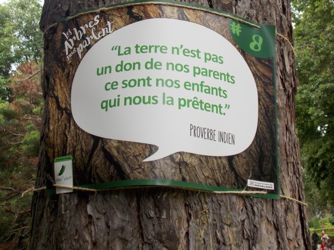 arbre qui parle 2