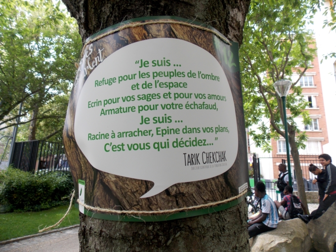 arbre qui parle 5