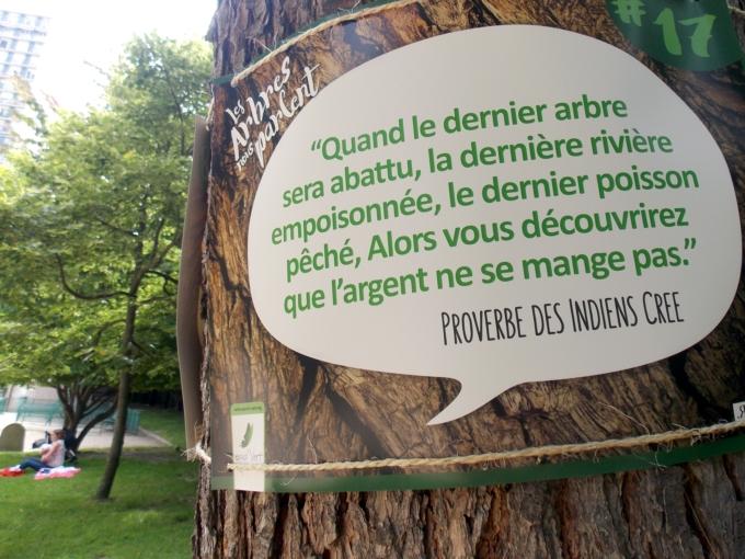 arbre qui parle 9