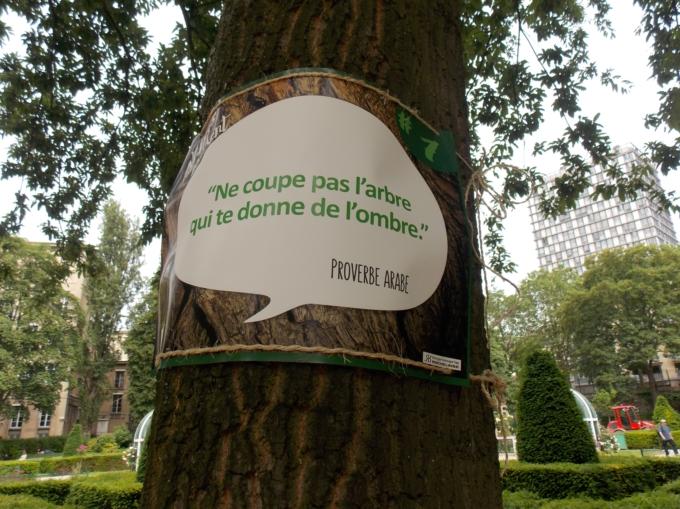 arbre qui parle