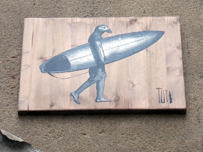 oiseau surfer