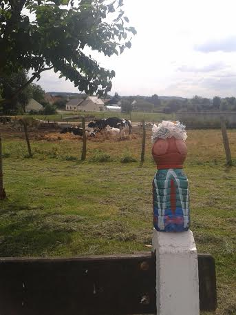 mme terre vaches beckett