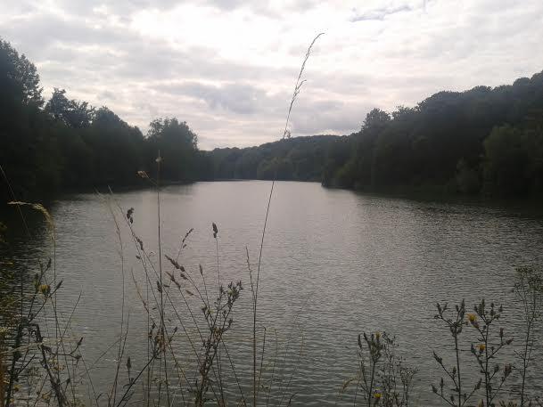 étang bievre