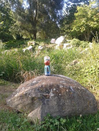 mme terre rocher bievre