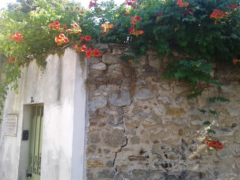 mur fleuri anais nin