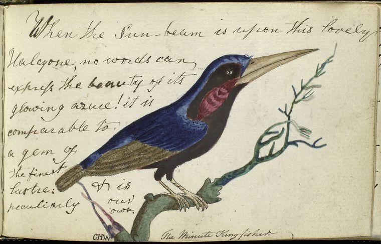 anne-wagner-album-1795-1834