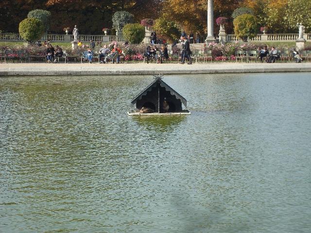 bassin-du-jardin-du-luxembourg