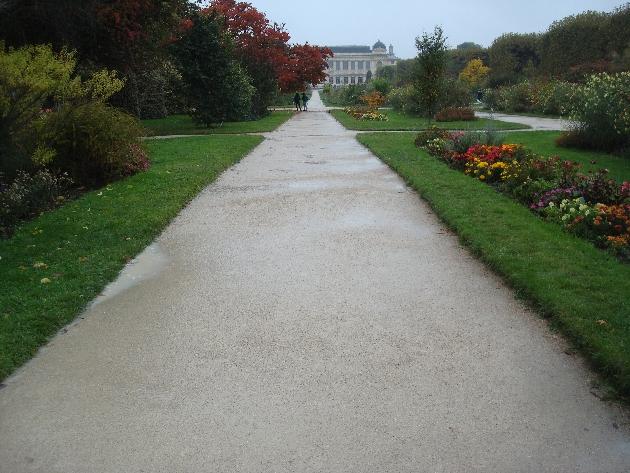 jardin-des-plantes-sous-la-pluie