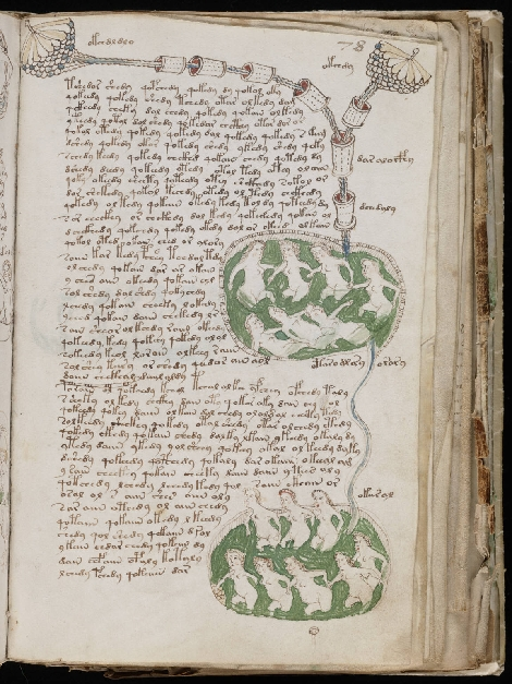 voynich-manuscrit-femmes-bain