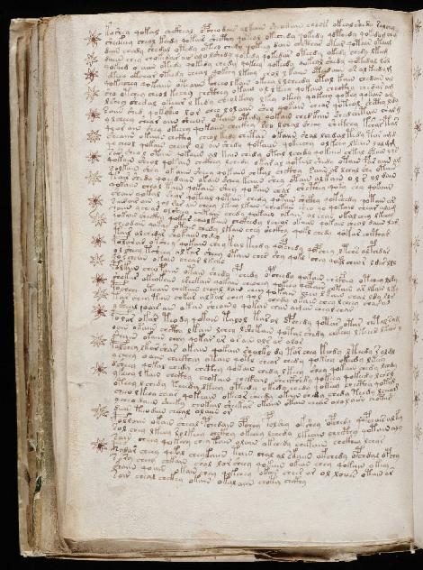 voynich-manuscrit-texte