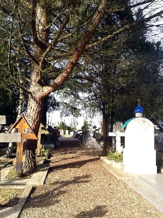 allée au cimetière russe-min