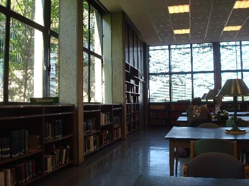 bibliotheque museum-min (1)