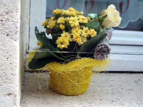 fleurs et oiseau-min