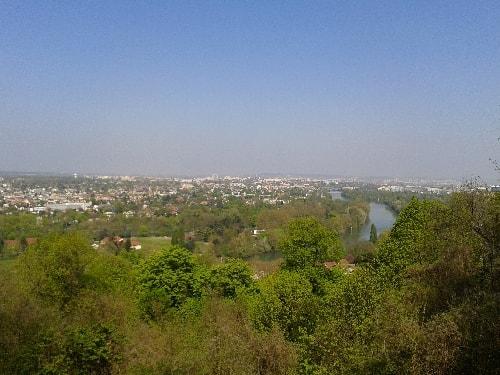 vue de la forêt au-dessus de chez eux-min