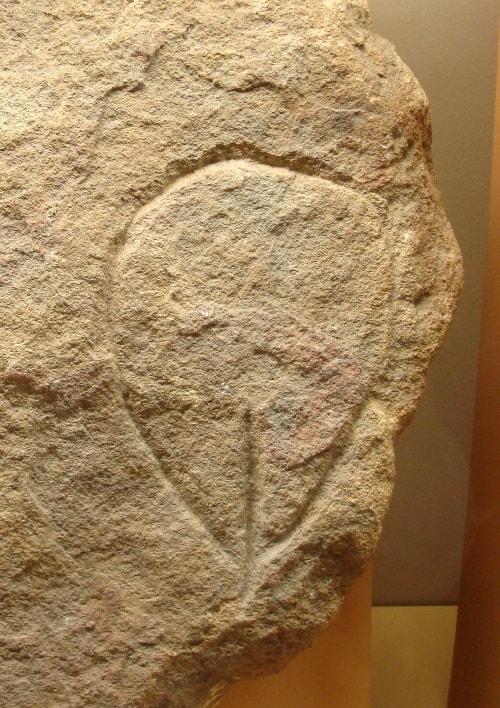 vulve paléolithique-min