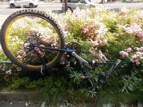 demi vélo
