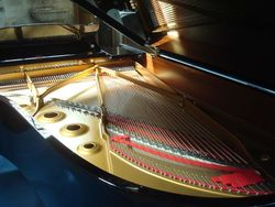 piano salpetriere,,,