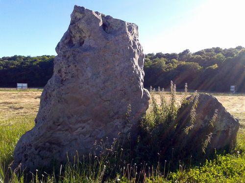 megalithes de changé 17