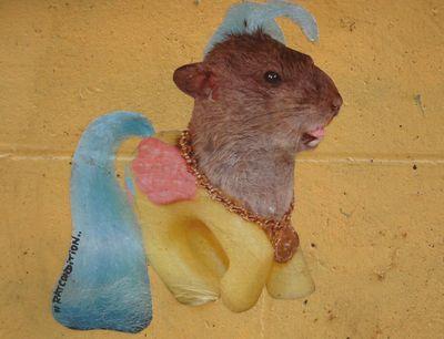 ratcondition