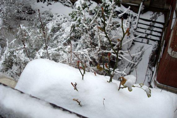 neige fenêtre