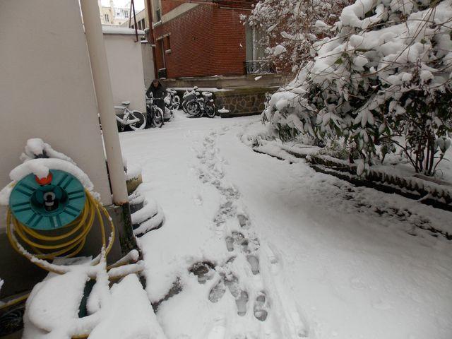 neige paris 1