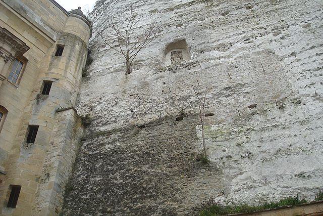 chateau la roche guyon 6