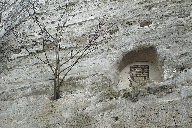 chateau la roche guyon 7