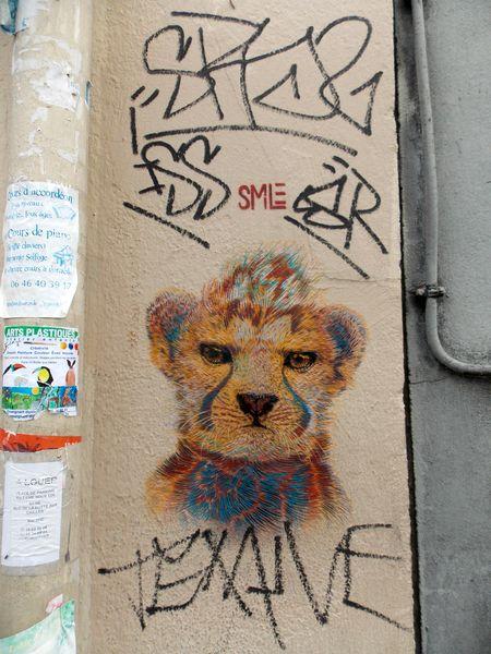 street art butte aux cailles 1