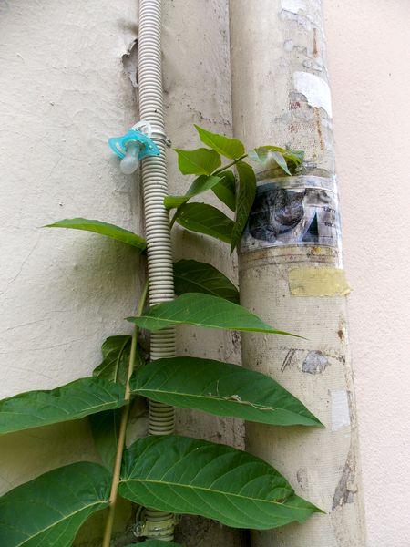street art butte aux cailles 18