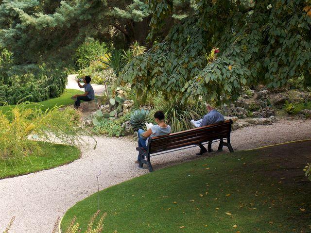 cet après-midi au jardin alpin du jardin des Plantes, photo Alina Reyes