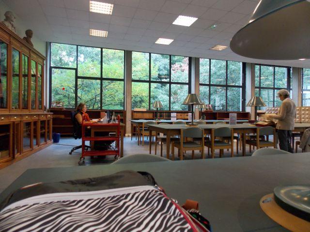 hier à la bibliothèque de recherche, photo Alina Reyes