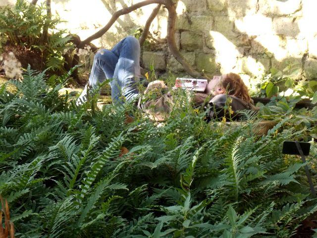 jardin 2 dormeur