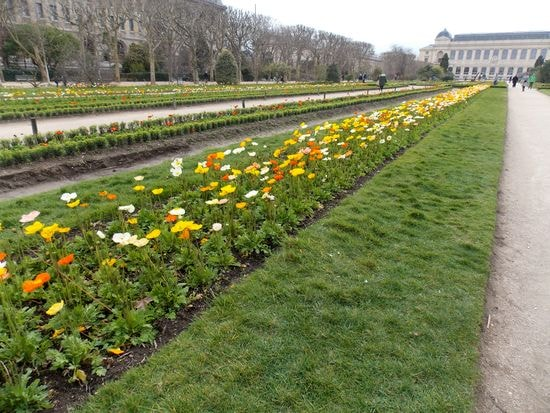 jardin 5-min