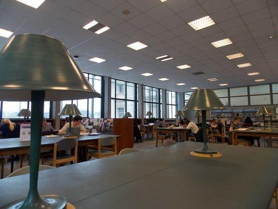 cet après-midi à la bibliothèque des chercheurs du Museum, photo Alina Reyes