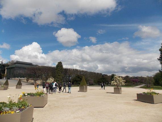jardin des plantes ciel-min