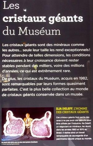 mineralogie museum 4-min