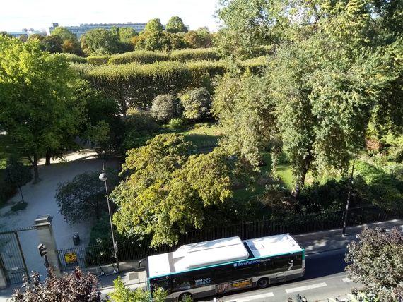 Vue de la bibliothèque Buffon, hier à Paris, photo Alina Reyes