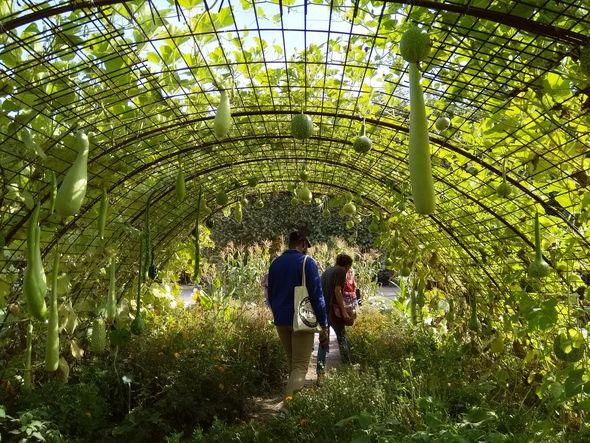 jardin des plantes 4-min
