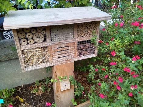 jardin d'abel 10-min