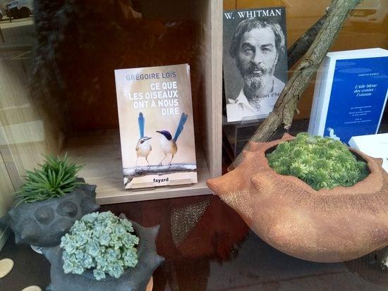 jardin d'abel 12 librairie les oiseaux rares-min
