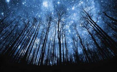 nuit solstice